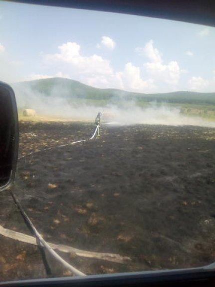 Участие в тушении возгорания сухой травы