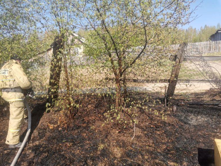 Тушение сухой травы